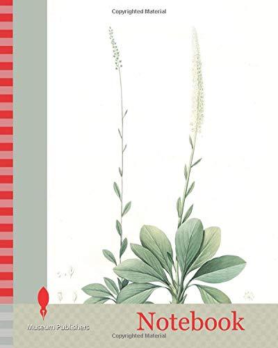 Notebook: Ophiostachys virginica, Chamaelirium luteum, Ophiostachys de Virginie, Blazing-Star or Devil's Bit, Fairywand, Redouté, Pierre Joseph, 1759-1840, les liliacees, 1802 - 1816