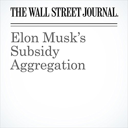 Elon Musk's Subsidy Aggregation audiobook cover art
