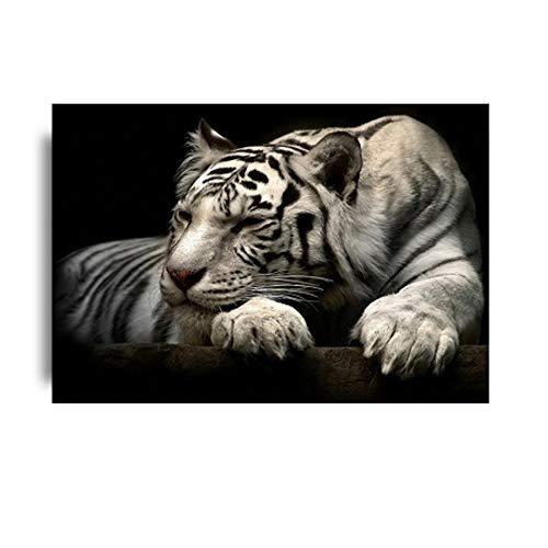 Jin Yi Global Muurkunst Canvas Schilderij Witte tijger Schilderij Wilddieren Afbeeldingen Woonkamer Poster en afdrukken 20x30cm(7.8