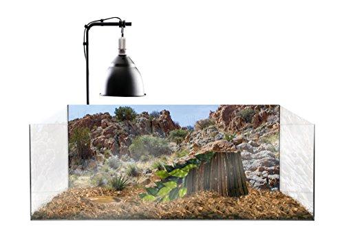 Exoterra terrariumset voor landschildpads, 60 x 35 x 23 cm