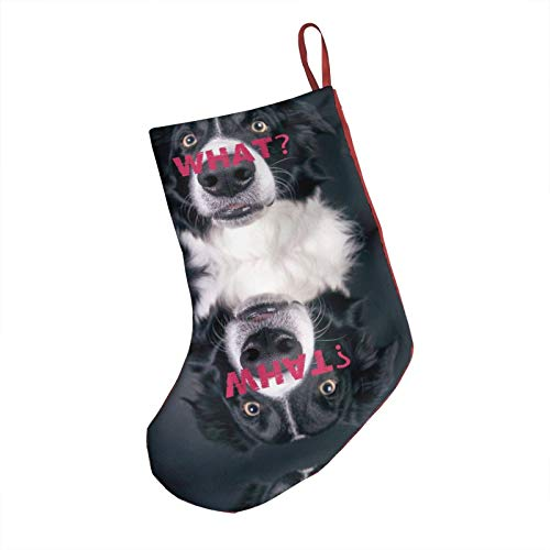 PhyShen Border Collie & Dog Christmas Stockings Xmas Gifts Party Decorationst 18-Inch Length Fireplace Hanging Stockings for Xmas Tree Holiday Family Party