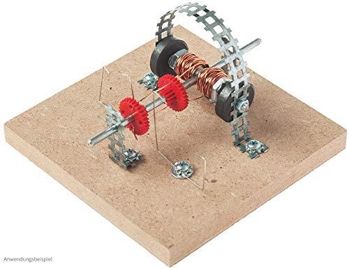 matches21 einfacher Elektromotor Bausatz Elektrobausatz Funktionsmodell Motor Bastelset Werkset für Kinder ab 12 Jahren