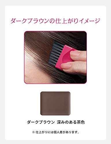 プリオールヘアファンデーションダークブラウン白髪用ファンデーション3.6g