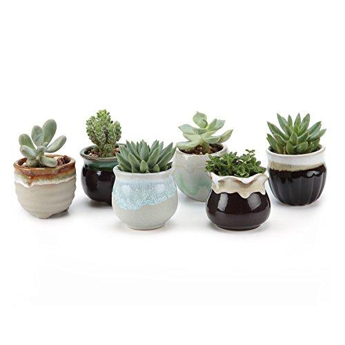 T4U 6.5CM Sukkulenten Töpfe Kaktus Pflanze Töpfe Mini Blumentöpfe Grau&Schwarz Basis Fließend Glasur Serie 6er Set