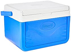 Top 10 Lunch Coolers