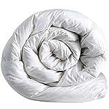 Italian Bed Linen Invernale Matrimoniale, Microfibra anallergica, Bianco, 250 x 200 cm