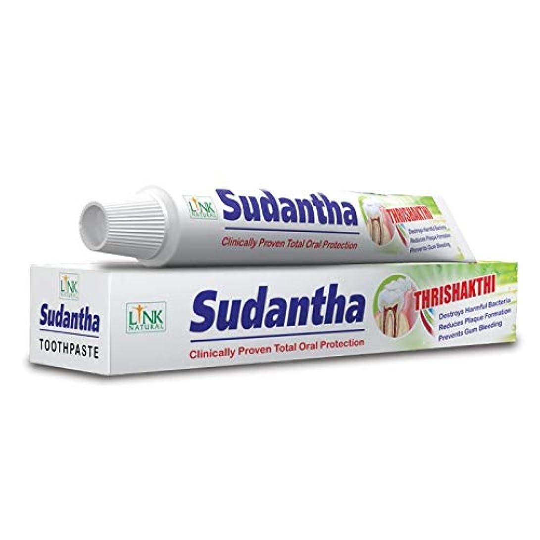 作業途方もない学校教育2 x 80 g リンクSudanthaホメオパシーHerbal Toothpaste for合計Oral保護