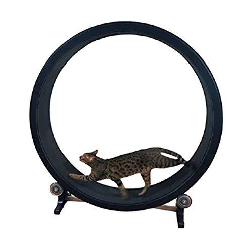 QNMM Katze Heimtrainer Katze Klettergerüst Katzenspielzeug Katzenstreu Katzenmöbel Roller Katze Laufband Katze Laufrad Durchmesser 1,2 Meter