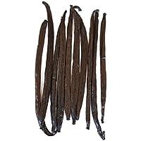 Native Vanilla - Vainas frescas de vainilla tahitiana - Semillas de grado A al por mayor - 10 vainas