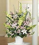 Deepest Sympathy - Same Day Sympathy Flowers Delivery - Sympathy Flower - Sympathy Gifts - Send Online Sympathy Plants & Flowers