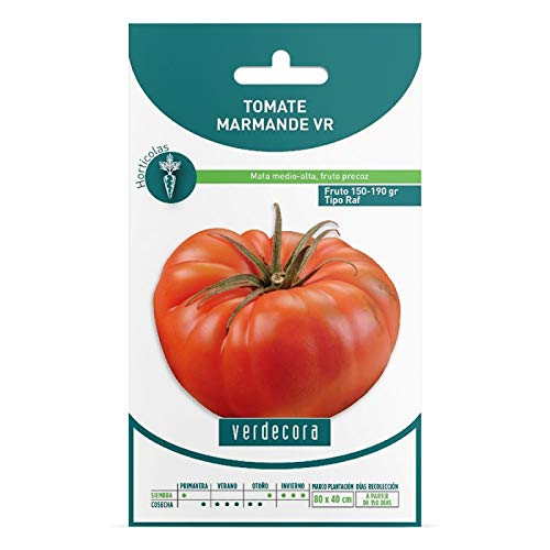 Verdecora   Semillas tomate marmande raf