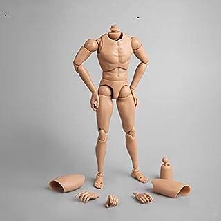 [Tbmodel] 1/6 フィギュア 男性 素体 素体セット 2種類ヘッドコネクタ B002 普肌