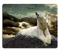マウスパッドファッション天然ゴムマウスパッドファッションホワイトホッキョクグマハンター氷の上の水滴イメージID 23045530