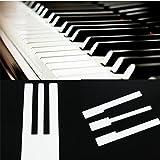 Teclas de piano – Marfil simulado para reemplazar la parte superior del piano accesorio