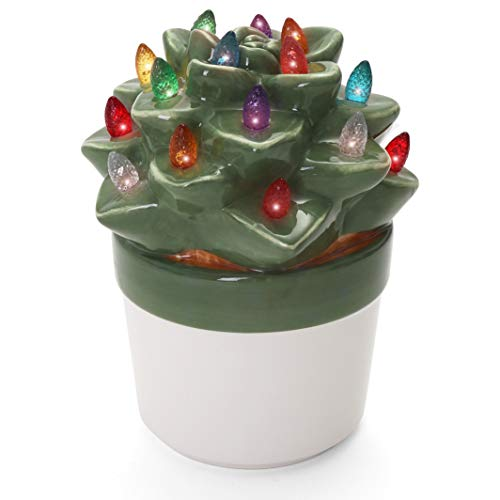 Milltown Merchants Ceramic Christmas Tree - Tabletop Christmas Tree with Lights - Lighted Vintage Ceramic Tree (Echeveria Succulent, Succulent Green)