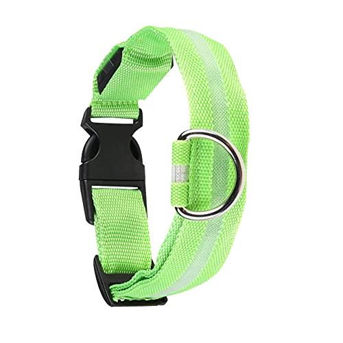 Collar luminoso para perro recargable por USB, collar de luz LED para perros y gatos, color verde