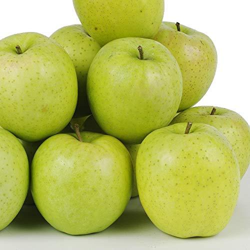 国華園 食品 りんご 青森産 ご家庭用王林 20kg 木箱