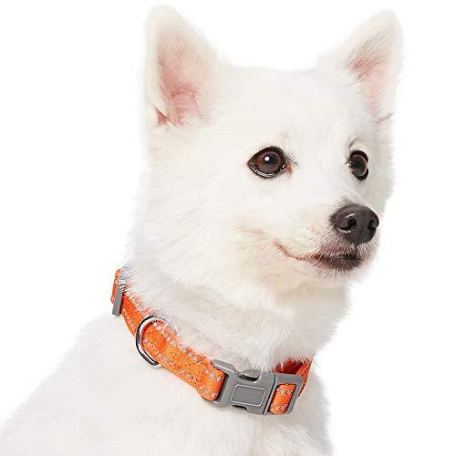 Amazon Brand - Umi. Essential Pastel - Collar para Perros L, Cuello 45-66 cm, Collares Ajustables para Perros (Naranja Calabaza)