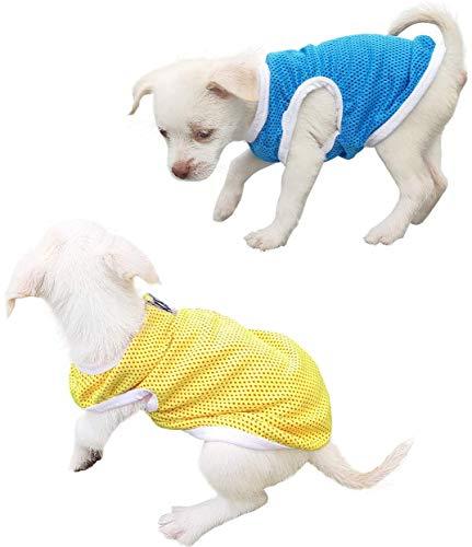 QiCheng & LYS Pet Clothing, T-Shirt Minimaliste pour Chien, Jolis Petits t-Shirts, T-Shirts de Sport, 100% Coton, vêtements d'été à Manches Courtes (Medium, Bleu/Jaune)