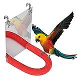 YOUTHINK Espejo de Loro de Acero Inoxidable de pájaro pequeño y Duradero Accesorio de Barra de Soporte Esmerilado