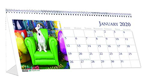 House of Doolittle 2020 Monthly Desktop Tent Calendar, 8.5 x 4.5 Inches