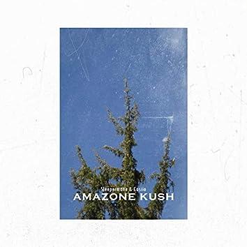 Amazone Kush