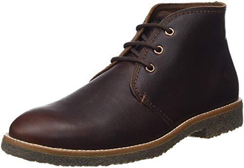 Panama Jack Gael, Zapatos de Cordones Oxford Hombre, Marrón (Castaño C9)
