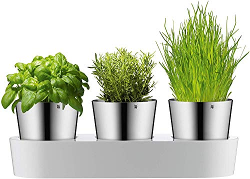 WMF 0641306040 - Set da giardino per erbe aromatiche WMF, 3 pezzi, Vaso per erbe con sistema di irrigazione, Acciaio inossidabile Cromargan, Plastica, Per erbe fresche, 36 x 12,5 x 12,5 cm, Bianco