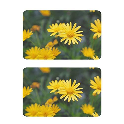 Imanes de nevera con margarita amarilla, diseño divertido de flores para nevera, etiqueta decorativa, 2 unidades