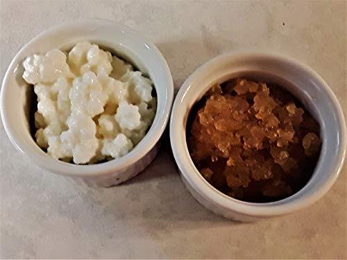Poseymom Duo Water Kefir and Milk Kefir Grains