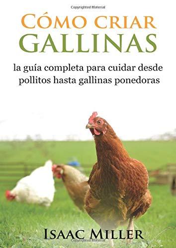 Cómo criar gallinas: la guía completa para cuidar desde po