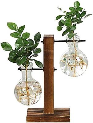 19ff7dd845b SODIAL Vintage Style Glass Desktop Plant Bonsai Flower Christmas Decoration  Va with Wooden L T