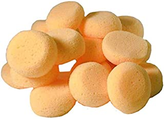 Creative Hobbies Pack of 25 Synthetic Sponges - 2-1/2 Inch Round, Craft Sponges - Ideal for Painting, Face Painting, Crafts, Pottery, Clay, Watercolors, Household Use