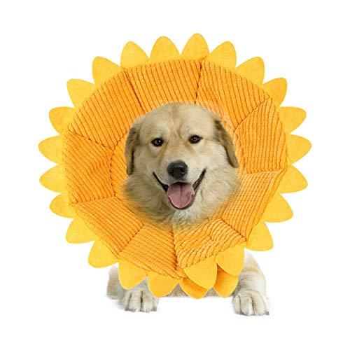 PETCUTE Schutzkragen für Hunde Katzen Halskrause hundekragen leckschutz Hund Trichter für Hunde