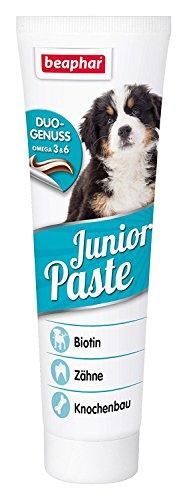 Beaphar Junior Pasta Cane | Costruzione Pasta per Giovani Cani Cuccioli portapremio per Forte Osso & Denti | con BIOTINA & Omega 3& 6| con B Vitamine | 100G Tube