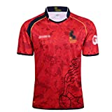 LQLD Maillots de Formation pour Hommes, Rugby Maillots 2017-2019 Espagne Home Court Rugby Uniformes Joueur Maillots Manches Courtes T-Shirt Sweat-Shirts Occasionnels,B,S