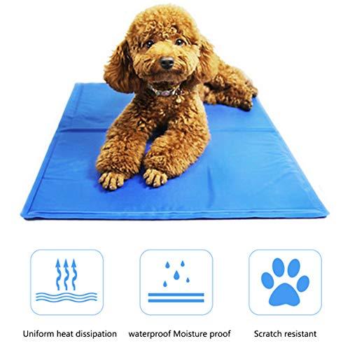 ZLBPET Alfombrilla de Refrigeración Animales Auto Refrigerante No Tóxico Almohadilla de Hielo para Mascotas Camas de Suelo Couch No Tóxico Adecuado para Familias y Viajes,Blue,60 * 100cm