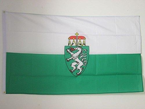 AZ FLAG Flagge Steiermark 150x90cm - Steiermark Fahne 90 x 150 cm - flaggen Top Qualität