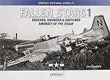 Fallen Stars 1: Crashed, Damaged & Captured Aircraft of the USAAF - Tom Laemlein