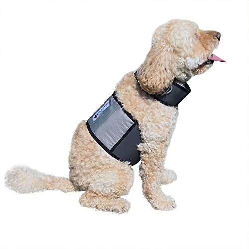CoolerDog Dog Cooling Vest and Cooling Collar - Ice Vest for Dogs Small (18' to 22' Girth)