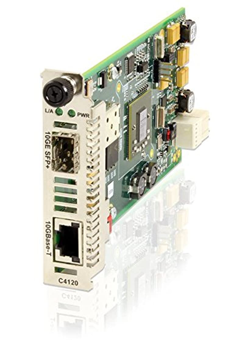 一時停止デコレーション九月Transition - Fiber media converter - 10 Gigabit Ethernet - 10GBase-X, 10GBase-T - RJ-45 / SFP+
