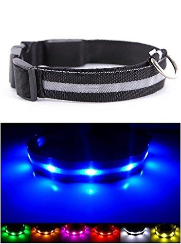 NEO+ UK Verbesserte Hund Sichtbarkeit & Sicherheit USB Wiederaufladbares LED Safety Dog Halsband. Ultrahelle LED 's. An Geräte. Hund Wird mehr sichtbar & Sicher (EXTRA Gross - XL, SCHWARZ)