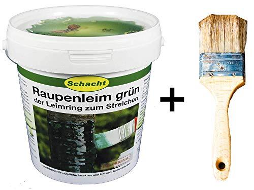 Schacht Raupenleim 1kg + Pinsel 35mm Breit