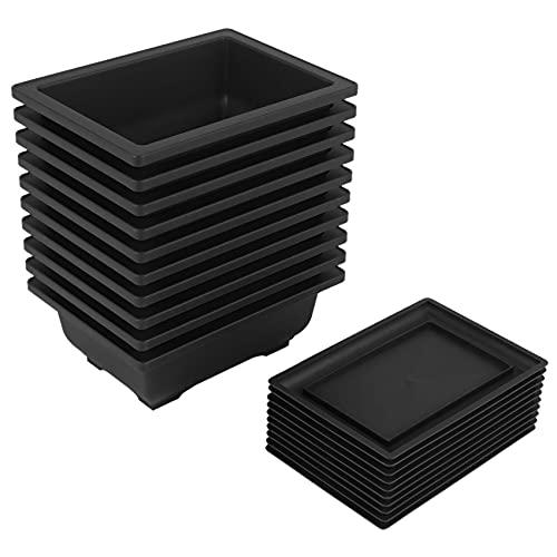 CKMSYUDG - Set di 10 vasi per bonsai con vassoio in plastica, per piante bonsai, per giardino, cortile, soggiorno, balcone, 16,5 x 12 cm
