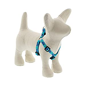 LupinePet Originals 1/2″ Turtle Reef 10-13″ Step in Harness for Extra Small Dogs