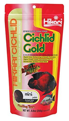 Hikari - Pellets flotantes para Mascotas (9,5 onzas), Color Dorado