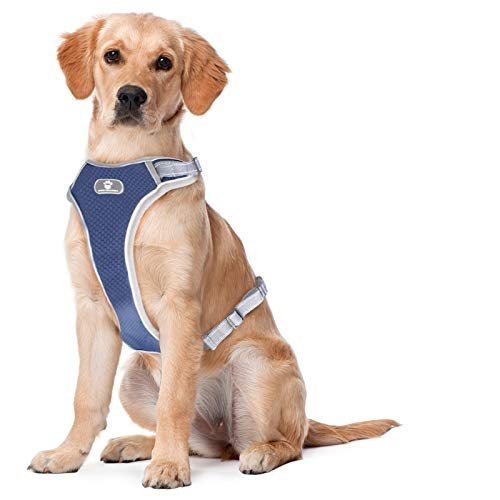 Linkstyle 2021 Upgraded No Pull Dog Harness, Unique Colors Reflective Adjustable Vest, with a Training Handle for Outdoor Walking - No More Pulling, Tugging or Choking [Easy to Put on & Take Off]