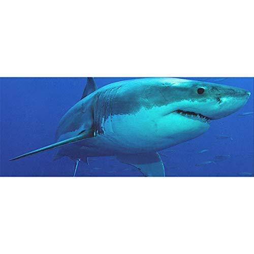 Weißer Hai Schwimmen Geschenkpapier Urlaub 58x23inch 2 Rollen Weihnachtsferien Geschenkpapier Geschenk Geschenkpapier Geburtstag für Muttertag Osterhochzeiten Geburtstage oder jede Gelegenheit