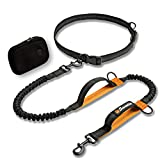 Sweetie Hands Free Dog Lead for Running - Dog Walking Belt Adjustable with Zipped Pouch & Poop Bag Holder - 4 FT Reflective Shock Absorbing Jogging Leash with 2 Handles