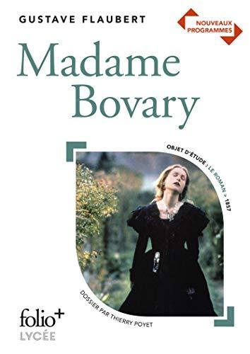 Madame Bovary: Mœurs de province